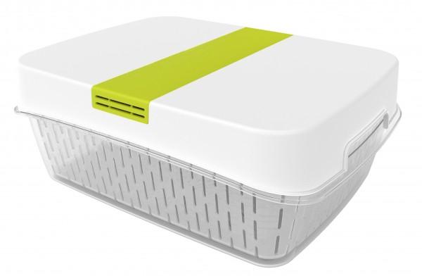 Rotho Dynamic Box FRESH, 1 VE = 2 Stück